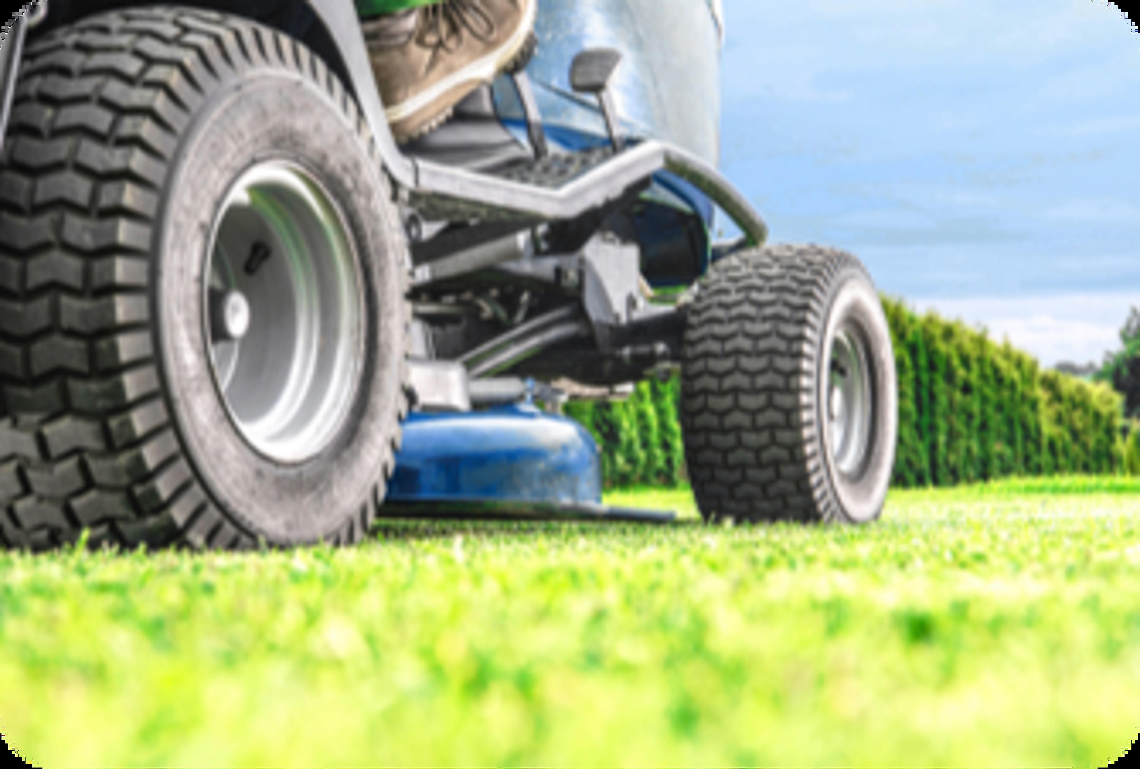 Plan rapproché de la tondeuse à gazon sur l'herbe