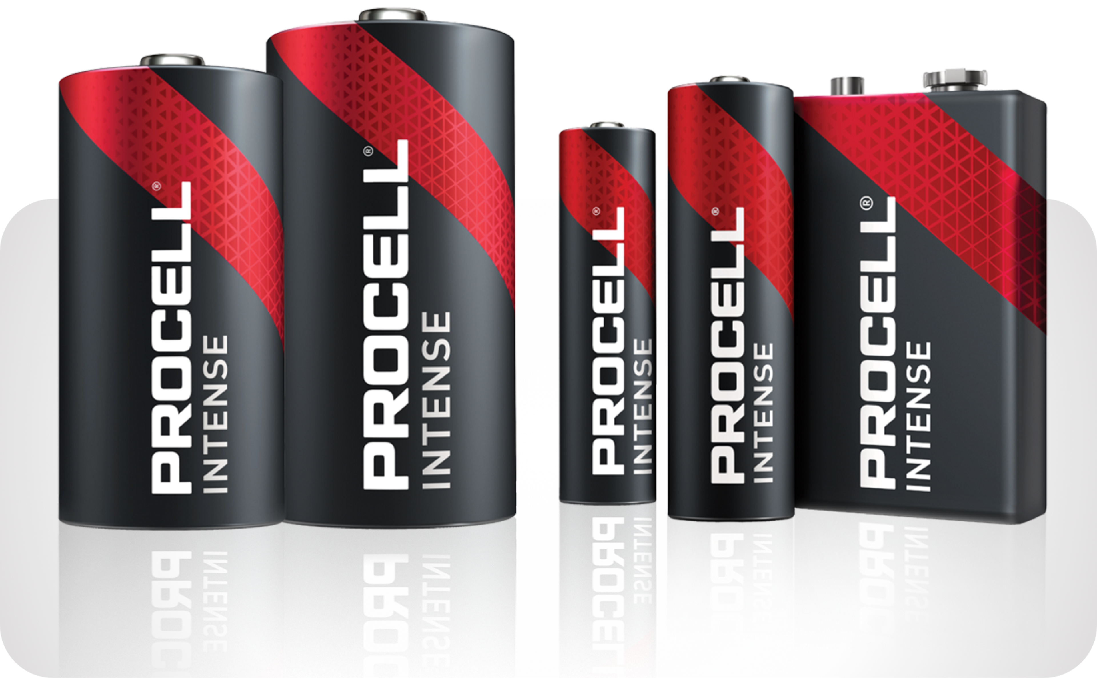 Picture showing various Procell Plus batteries  in popular sizes: AA, AAA, C, D and 9-volt