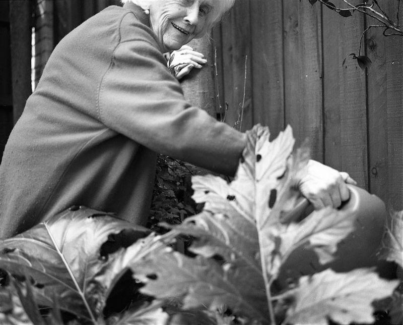 Margaret McDonald watering the garden
