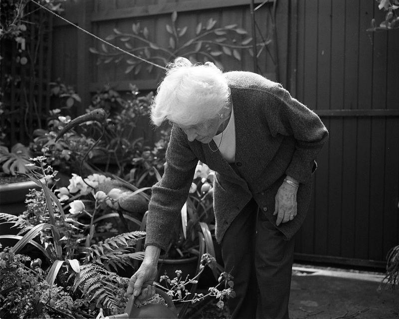Grandmother watering