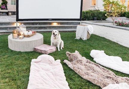 garden cinema with dogs