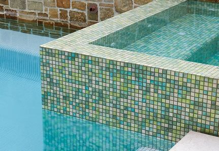 Stone wall with pool and feature plant in Barwon heads landscape.