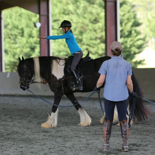 Communicating With Horses: How to Use Longe Lessons to Develop an Independent Seat for Clear Communication