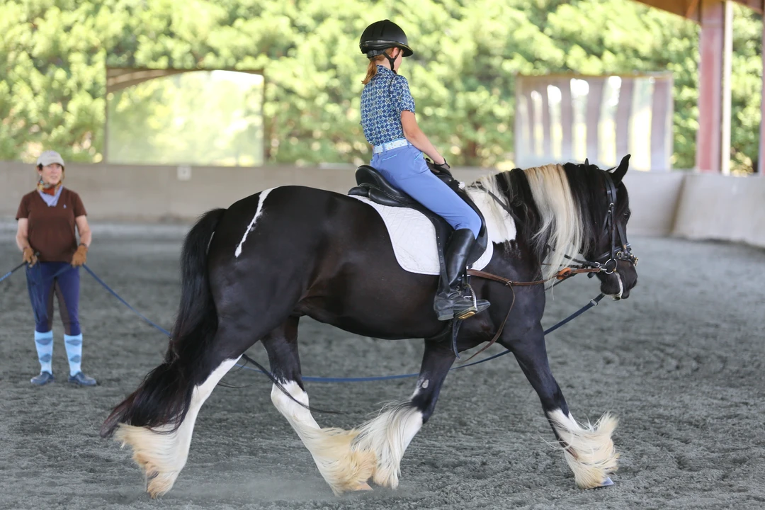 Work on the longe line is useful for developing the seat because the rider can focus on their own position while the person longeing the horse is in control. Image courtesy of Amber Heintzberger.