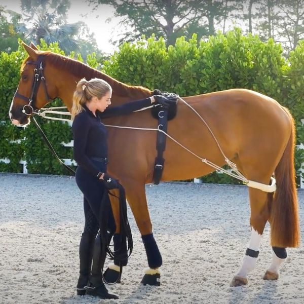 How U.S. Showjumper Hannah Selleck Uses The Pessoa Lunging System To Improve Her Horses' Fitness & Communication Out of the Saddle