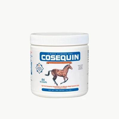 Nutramax Cosequin Original Joint Health Supplement