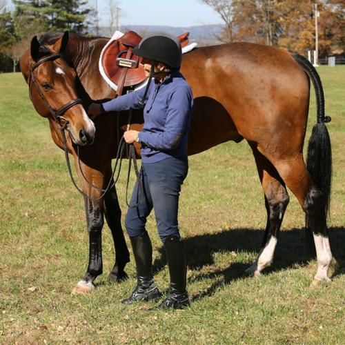 Communicating With Your Horse: Riding Is a Two-Way Conversation with Anne Kursinski