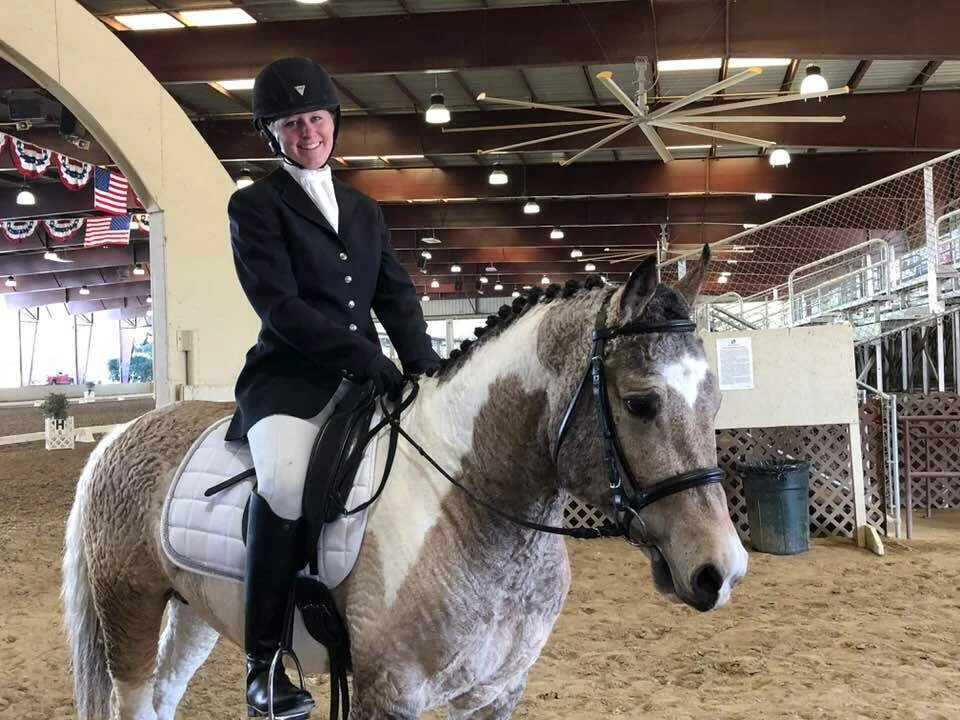 The American Bashkir Curly horse excels in many disciplines, including dressage.