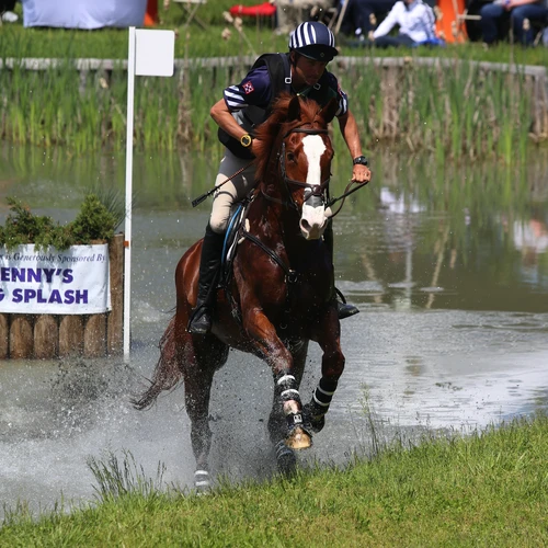 Water Training: Boyd Martin Eventing Builds Pond for Therapy and Conditioning