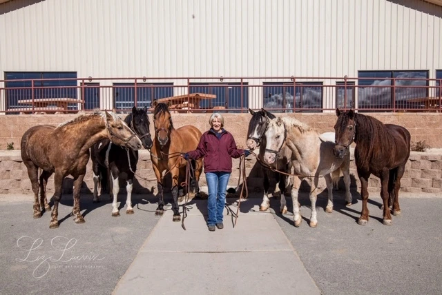 Joan Olson, President of the Curly Horse Advocacy, with her Curlies.