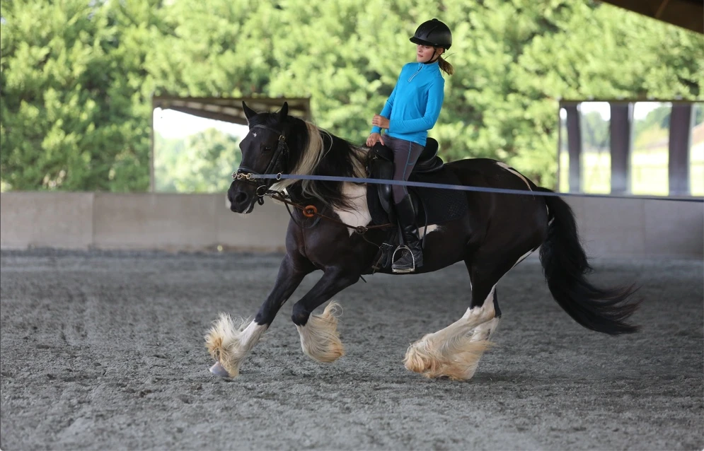 The rider should learn to open and close the angle of the hips in order to effectively follow or influence the horse's movement. Image courtesy of Amber Heintzberger.