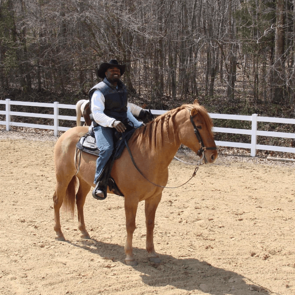 From the Gridiron to the Barn – Brian Westbrook Found A Love for Horses in Between NFL Seasons