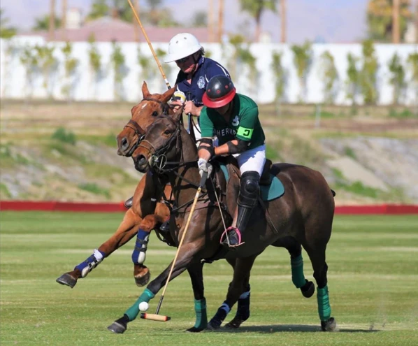 What It Takes to Be a Professional Polo Player with Jared Sheldon
