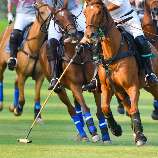 Polo 101: Everything You Need To Know About One Of The Oldest Team Sports