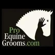 By Liv Gude Founder of Pro Equine Grooms