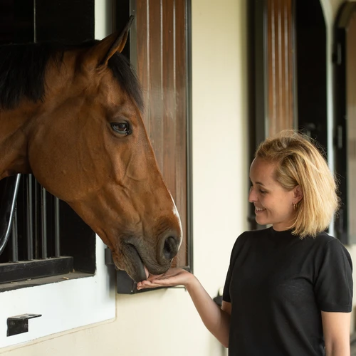 Remembering Your Why: Making Your Passion For Horses Sustainable with Annette Paterakis