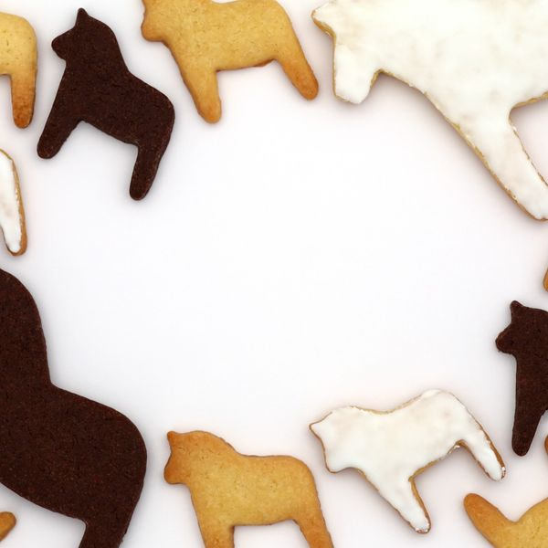 7 Homemade Horse Treat Recipes Your Horse is Sure to Love