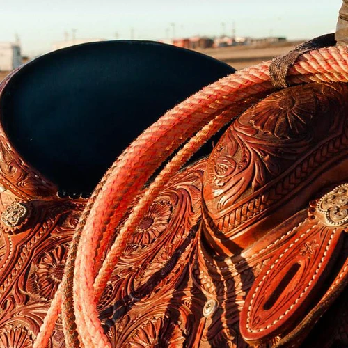 Corro 101: The Rodeo! What You Need To Know Before You Go