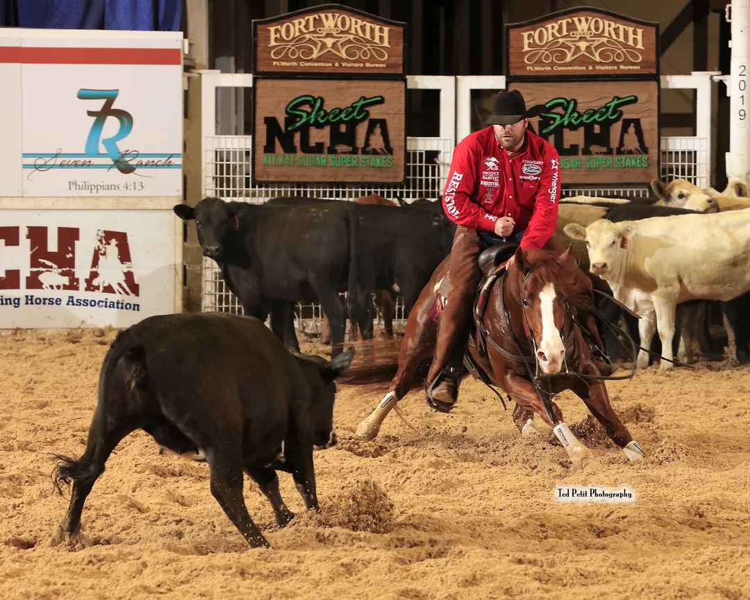 Grant Setnicka and Sueper Trouper, owned by the J Five Horse Ranch, at the 2019 NCHA Super Stakes. Photo courtesy of Ted Petit Photography.