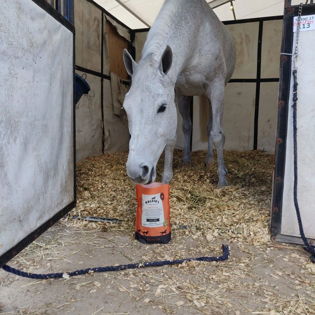 Horses just can't get enough of the all-natural, all-healthy horse treats. Image courtesy of Kelcie's Horse Treats.