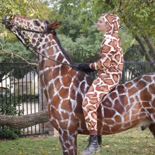 Halloween Is Near! Here Are Corro's Favorite Costume Ideas For You & Your Horse