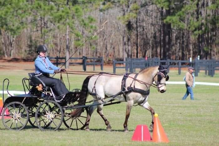 Angie McDaniel and her pony, Squirrel, at the Katydid CDE in Aiken earlier this year, before the pandemic.