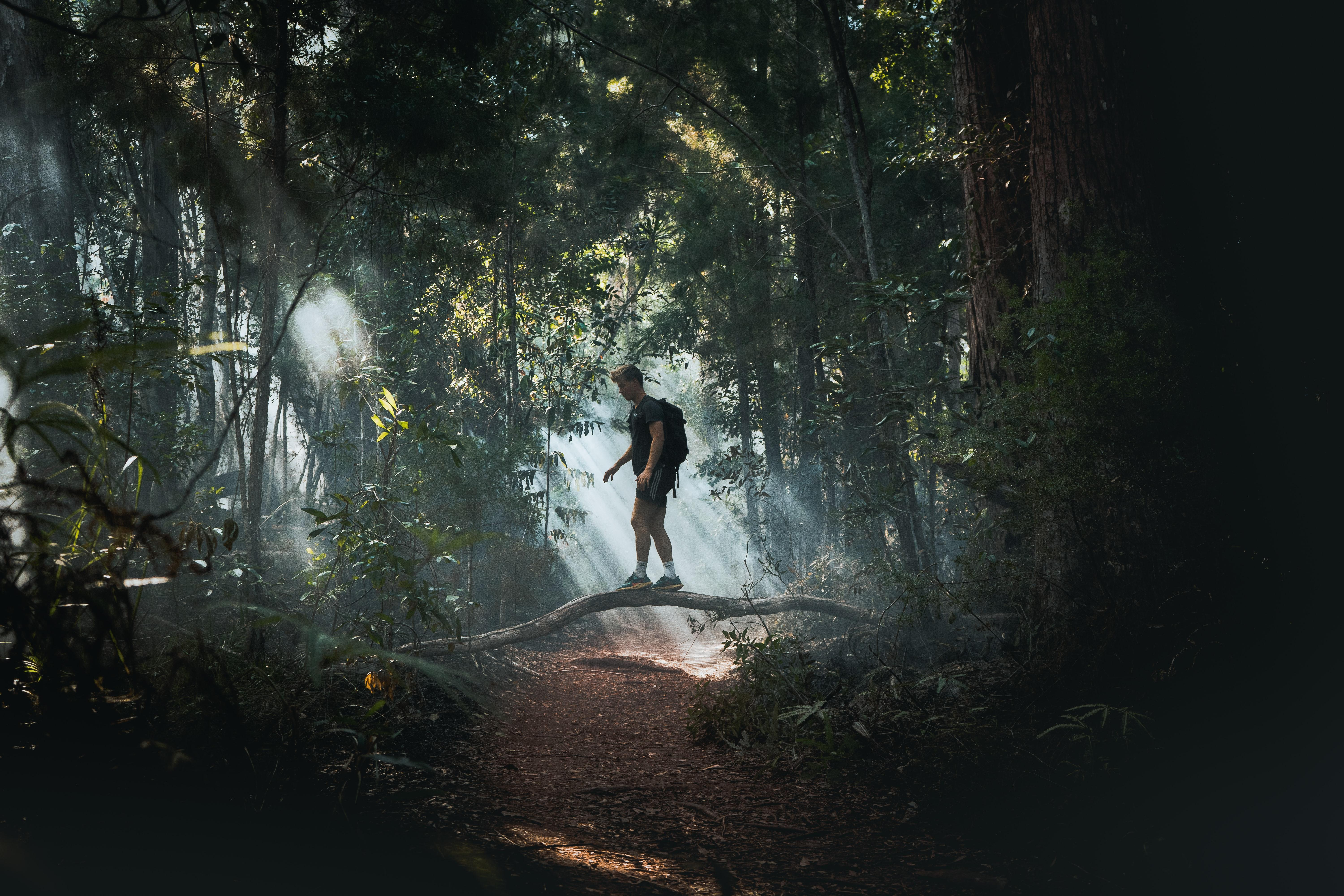 Man in Deep Forest