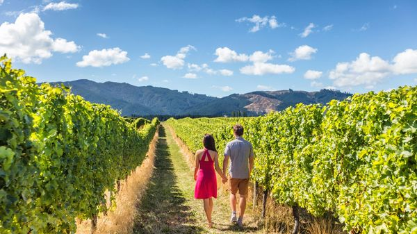 A couple walks through rows of grape vines on a private farm tour