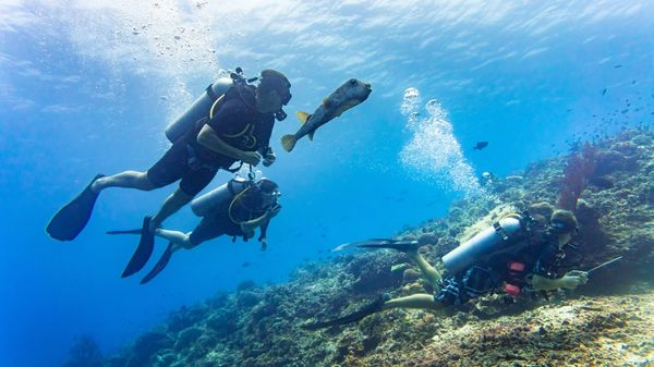 Tourists take time on their vacation to go scuba diving with a guide