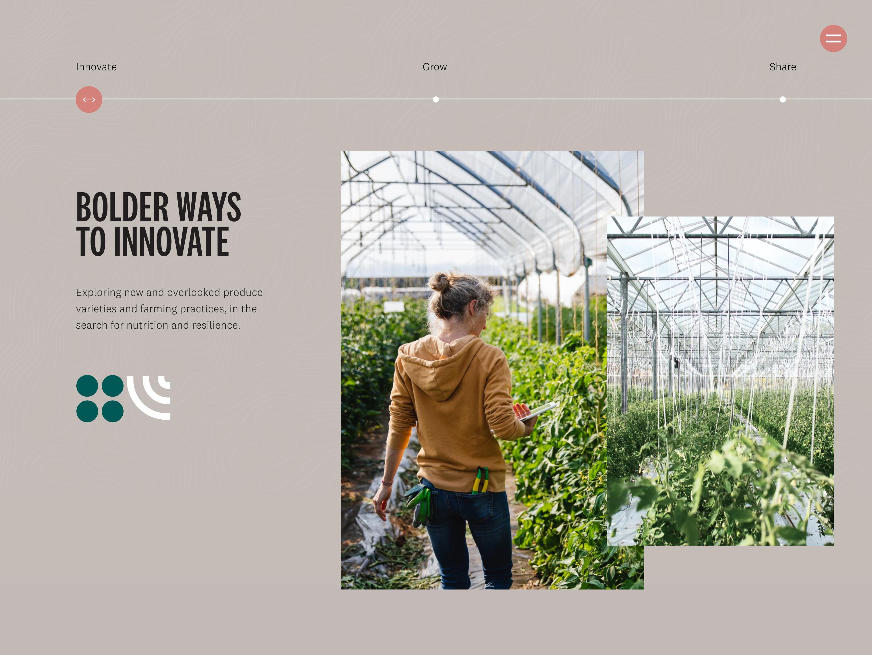 Screenshot of RipePlanet Initiatives page