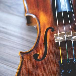Close up picture of violin with strings