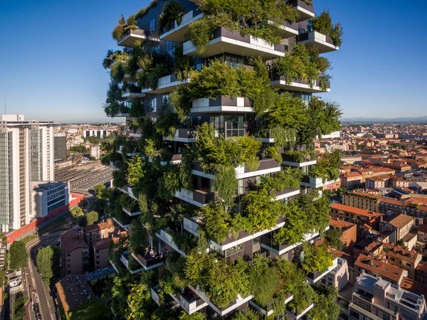 A vertical forest in Milan, Italy, called Bosco Verticale has trees and shrubs on each floor of the building, creating a beautiful columnar mountain.