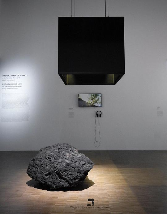 This is the Resurrecting the Sublime exhibit at the Cooper Hewitt Design Museum. A large, porous, dark grey rock stands on a bare wooden floor with a light shining down. Above the stone is a large, hollow black rectangle where a person can stand and experience the smell of flowers that are now extinct.