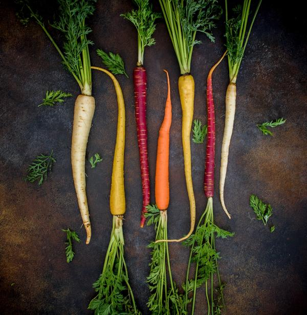 7 beautiful carrots in orange, white, and purple, with their bright green stems on a dark background