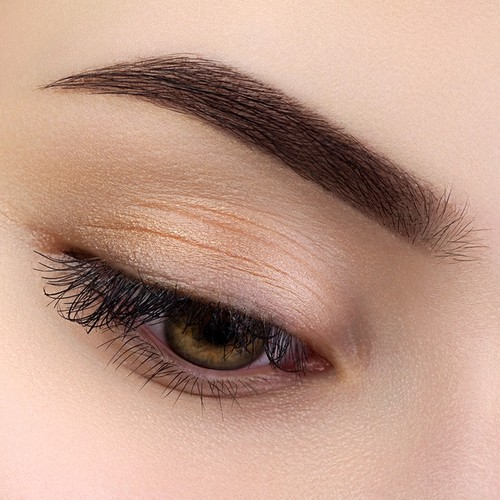 Brown female eye with ombre brows