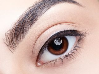Thin line that sits at the root of lashes
