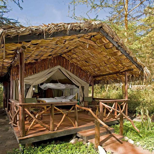Migunga Forest Camp