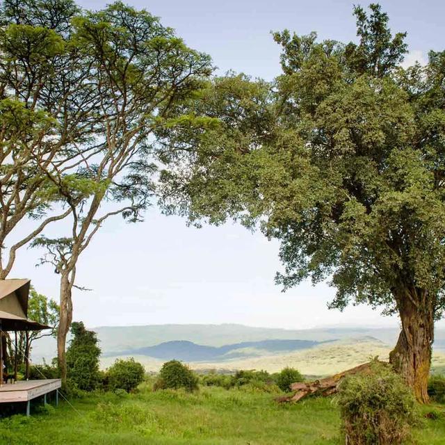 Nomad Entamanu Ngorongoro