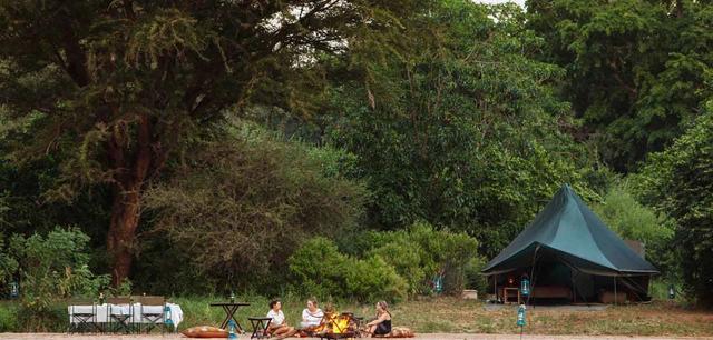 Wayo Green Camp