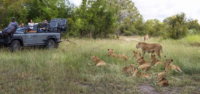 Cape Town, Winelands and Kruger Park Safari