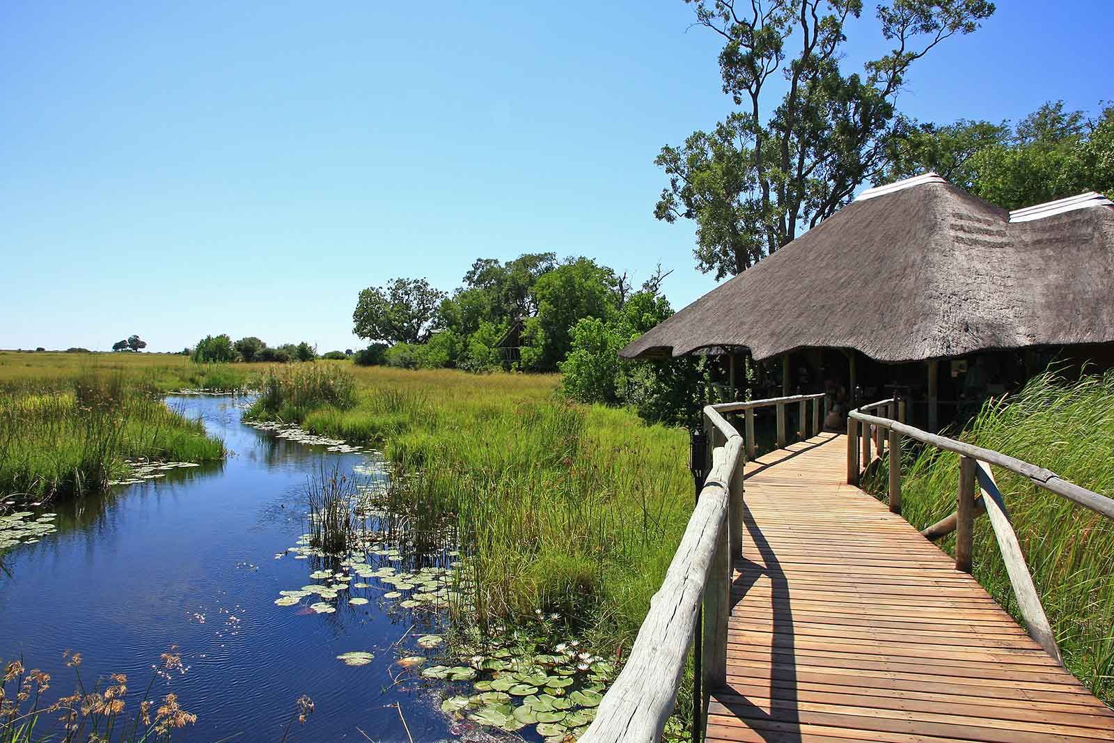 Explore Botswana on Safari