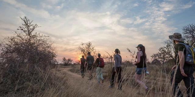 Kruger Walking Safari