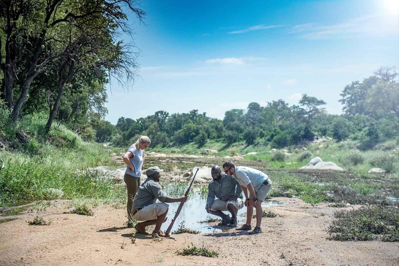 Simbavati Trails Camp Walking Safari