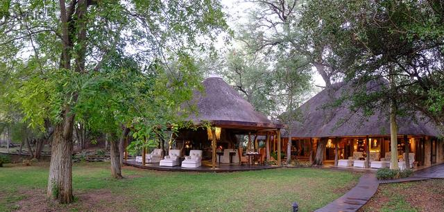 Kruger Express Premier