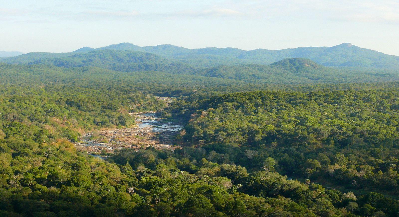 Nkhotakota Wildlife Reserve