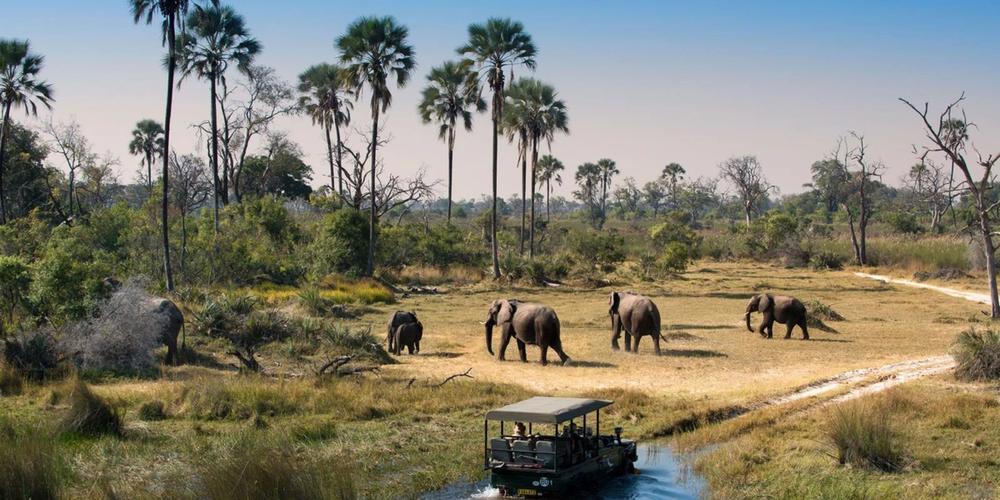 Sun Safaris Botswana Safaris & Packages