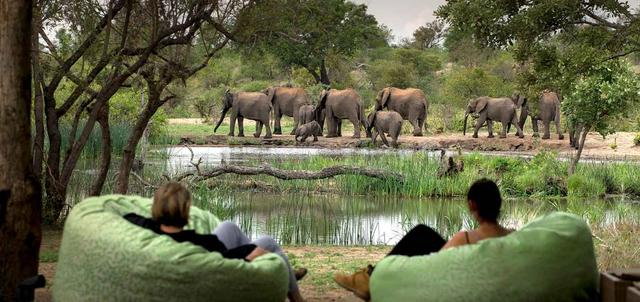 Big 5 Kruger Romance Luxury