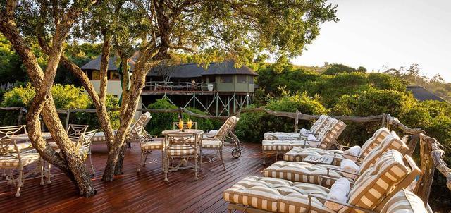 Lalibela Tree Tops Lodge