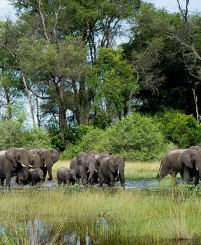 Botswana - Southern Africa