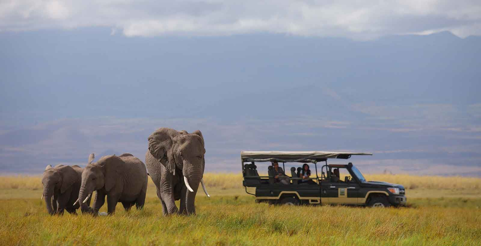 Luxury Kenya Classic Sky Safari